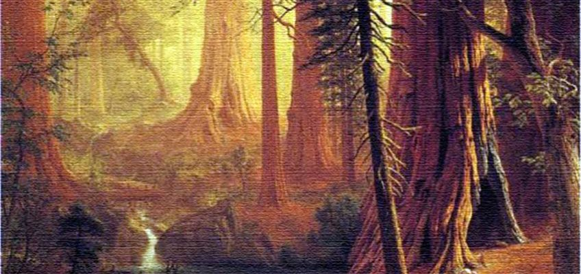 Was Late Bloomer John Muir the Father of Steampunk?
